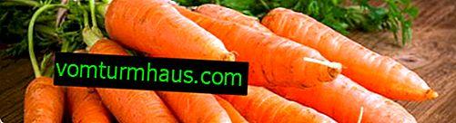 Wie lagere ich Karotten im Winter in einem Privathaus und einer Wohnung?