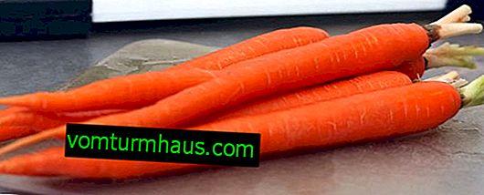 Fördelarna och skadorna på morötter för levern och gallblåsan