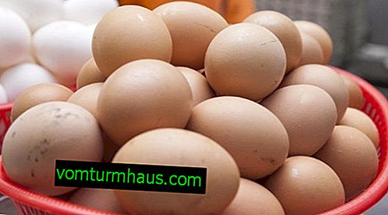 Hvor mange gram vejer et kyllingæg?