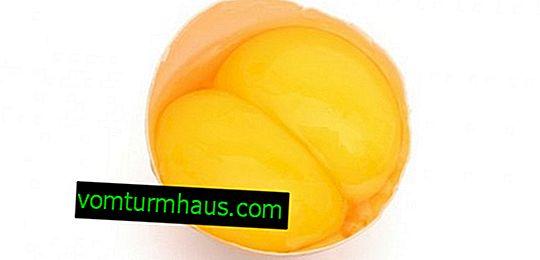 Zakaj piščanec položi jajca z dvema rumenjakoma?