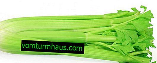 Ali lahko jem zelenjavo s pankreatitisom
