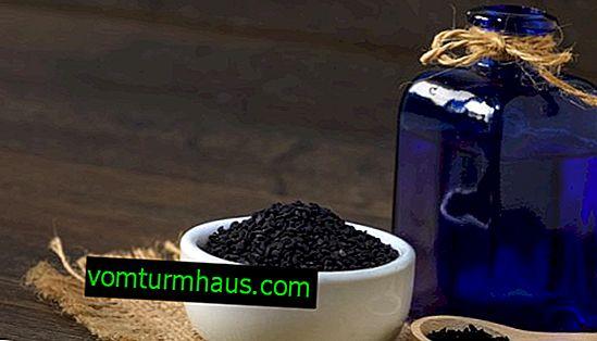 Användning av svart kumminolja för pankreatit