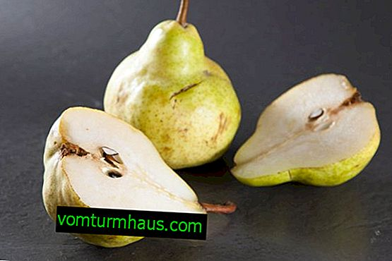 Features of planting and care of pakham pear