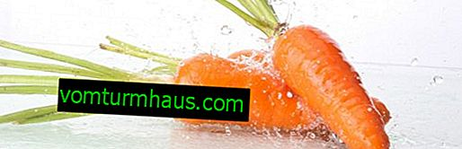 Wie viel Wasser steckt in Karotten?
