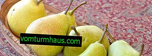 Caratteristiche di semina e cura della pera a forma di colon del Variety Decor