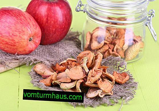 Vpliv posušenih jabolk na zdravje ljudi