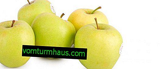Características detalladas y características del cultivo de manzanos variedades Korey