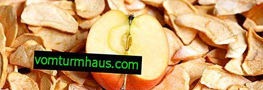 Hur man lagrar torkade äpplen för vintern hemma