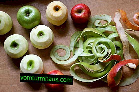 Caractéristiques de l'effet de la pelure de pomme sur le corps humain