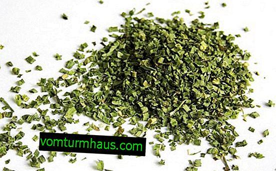 Kako sušiti zeleno čebulo za zimo?