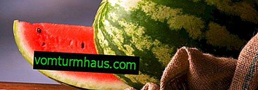 Ist Wassermelone bei Cholezystitis und Pankreatitis möglich?
