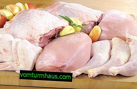 Krůtí maso: užitečné a škodlivé vlastnosti, složení, obsah kalorií