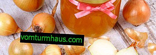 Wie man Zwiebeln mit Honig für Kinder vom Husten nimmt?