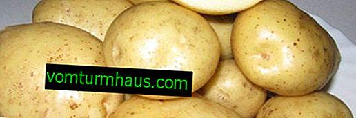 Beskrivelse og egenskaber for kartoflsorter Timo