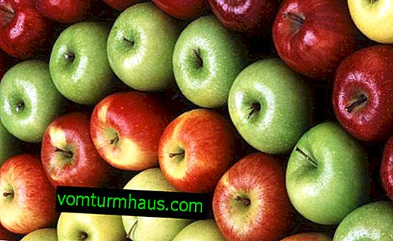 How many apples can I eat per day?