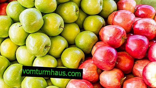 Najbolj zdrava sorta jabolk za človeško telo