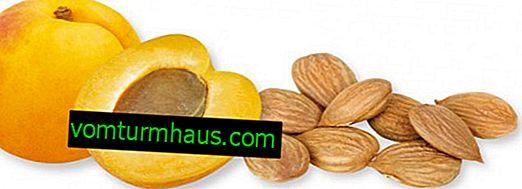 Hur många aprikoskärnor kan du äta per dag?