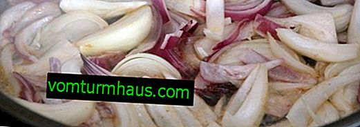 Is it possible to fry red onions instead of white
