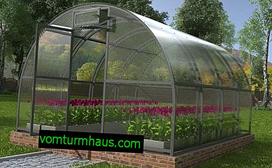 Funktioner i Kreml Luxury Greenhouse