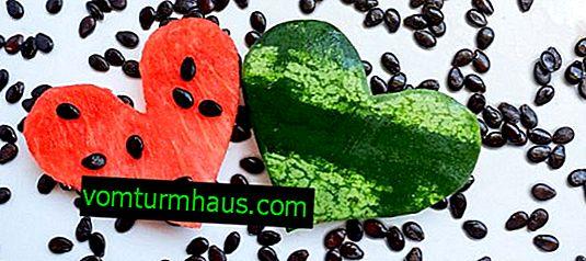 Značilnosti lubenic ocvrtih sončničnih semen
