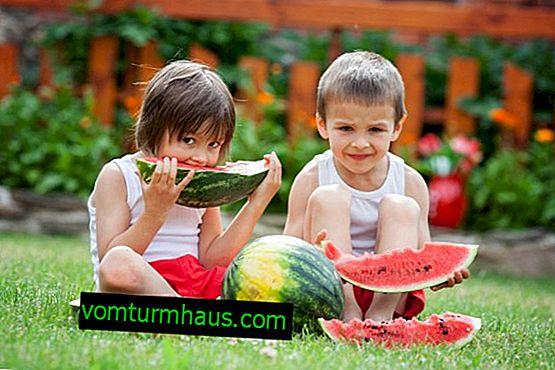 Uporabnost in škoda lubenice na prazen želodec