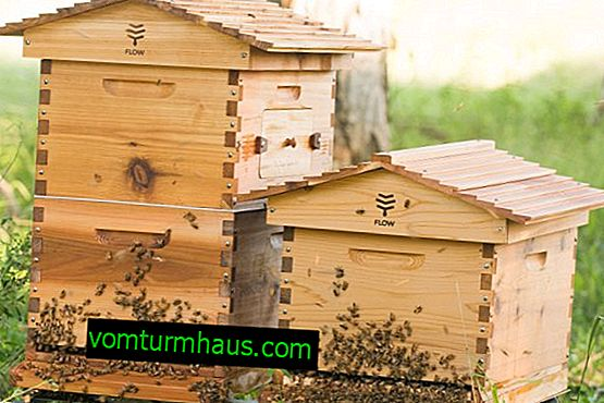 Key features of the 8-frame hives
