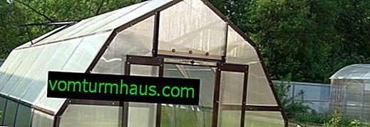 Nøglefunktioner i Glass House Greenhouse