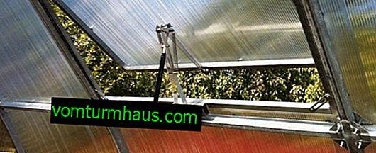Hur tar man bort kondensat i ett växthus?