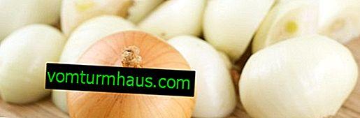 Cómo conservar adecuadamente las cebollas peladas