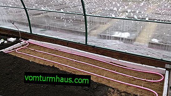 How to make a warm floor in a greenhouse with your own hands