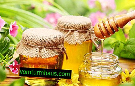 Який мед корисніше - квітковий або липовий?