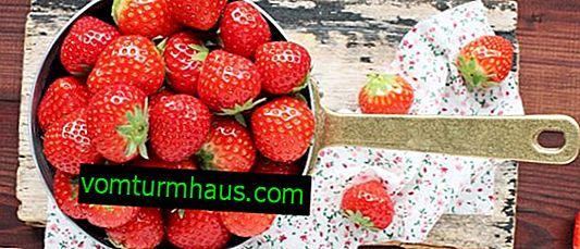 Ползите от консумацията на ягоди за човешкото тяло