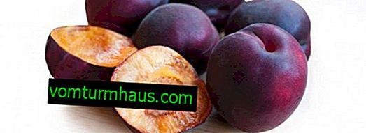 Beskrivelse og beskrivelse af abrikos sort velvet