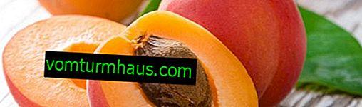 Beskrivning och egenskaper hos de favorit aprikosvarterna