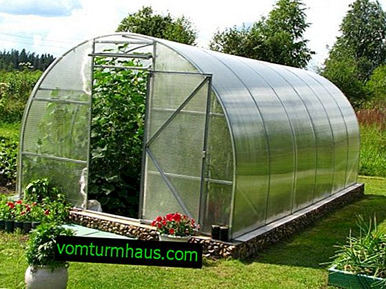 Do-it-yourself polycarbonate greenhouses for home use