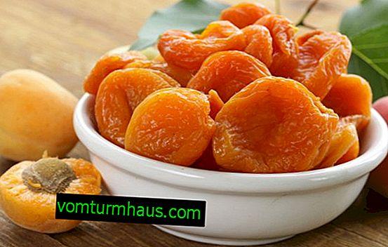 Jak se jmenuje sušená meruňka?