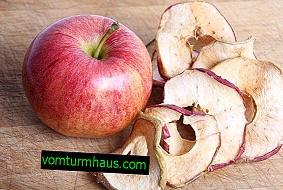 Характеристики на сушене на ябълки в микровълновата