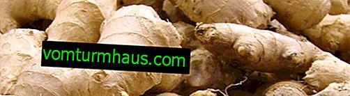 Comment le gingembre affecte-t-il la pression artérielle: recommandations