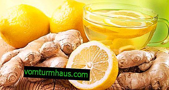 Hur man tar ingefära med citron och honung när man går ner i vikt