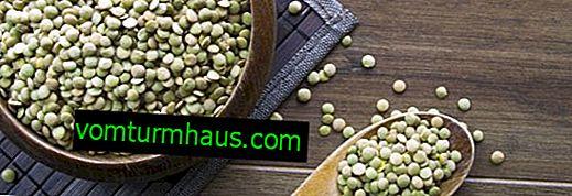 Grüne Linsen: nützliche Eigenschaften und Kontraindikationen für den menschlichen Körper