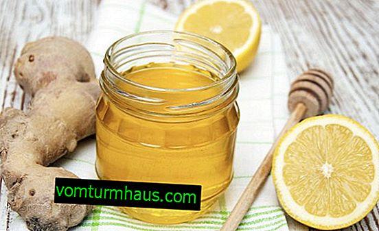 Jengibre, limón y miel: propiedades útiles y curativas, contraindicaciones.