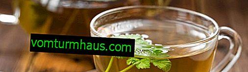 Thé de feuilles de framboisier: composition chimique, utilisation, avantages et inconvénients