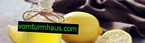 Рецептата за тинктура от джинджифил на водка с лимон и мед у дома
