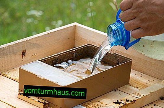 Hvordan man laver omvendt biesirup