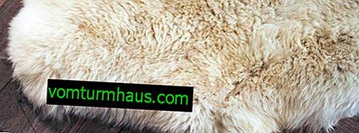 Kako se obrađuje ovčja koža, ovčja vuna: značajke, faze, primjena
