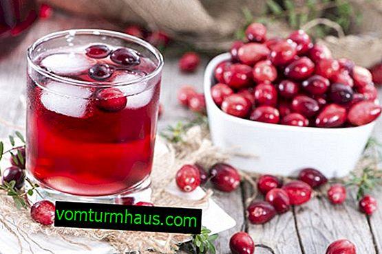 Los beneficios y daños del jugo de arándano rojo para humanos