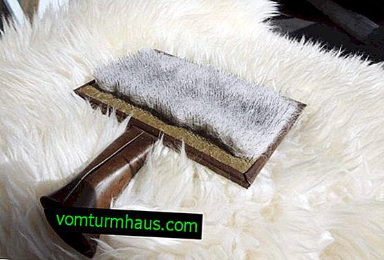 Evde temizlik koyun derisi (koyun derisi): yöntemler ve öneriler