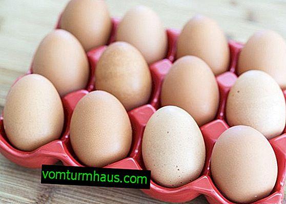 Ile jaj kurzych można przechowywać