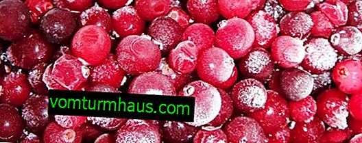 Frozen cranberries: beneficial and harmful properties