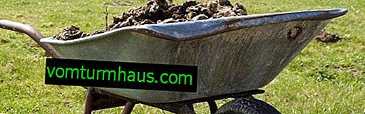 Er det muligt at bruge gødning fra får eller humus til at befrugte haven